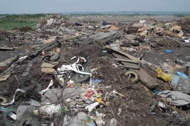 ВОмской области оштрафовали три компании, нарушающие закон обутилизации отходов