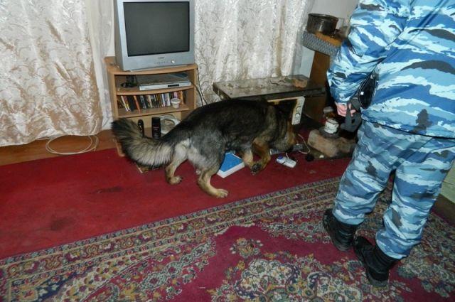 Притон для наркоманов организовала жительница Волгограда усебя дома