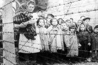 «Давайте просто помнить жертв войны, жертв Холокоста».