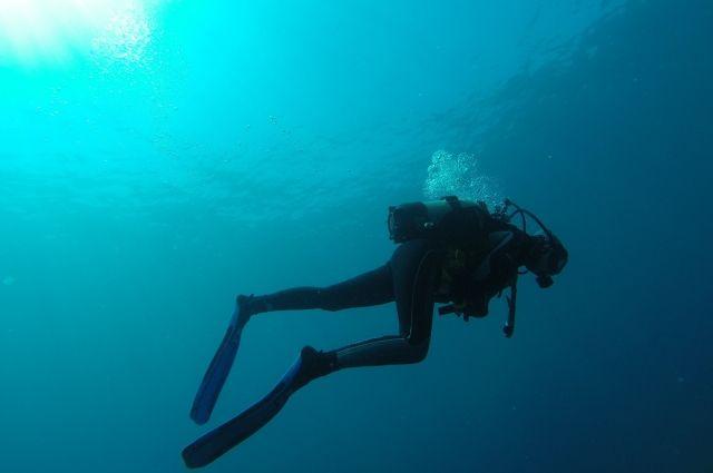 Дайверы из кемеровского клуба «Наяда» встретят 2017 год под водой.