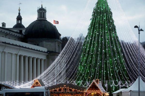 А елка в Вильнюсе укрыта шатром из множества белых лампочек.