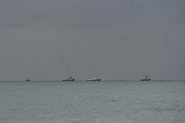 Тела 12 жертв крушения Ту-154 подняли наповерхность Черного моря