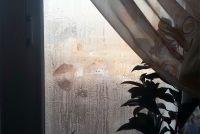В жилище постоянно промерзали и мокли стены.