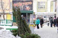Елочные базары открылись в разных частях города.
