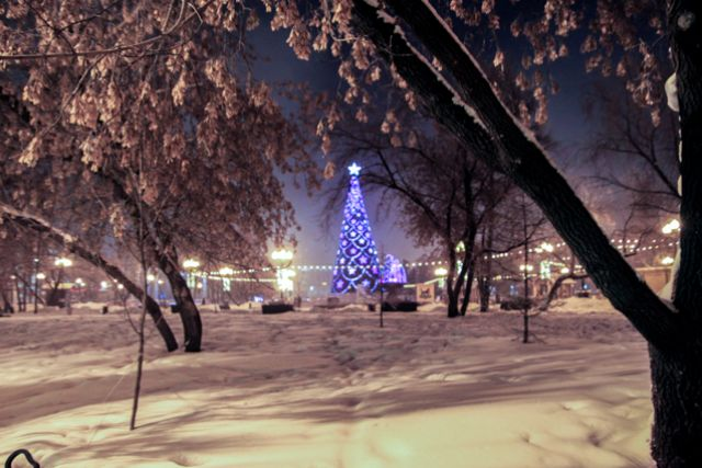 Главная елка Иркутска.