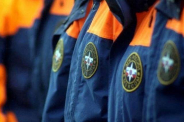 Воронежские власти ввели врегионе особый противопожарный режим нановогодние праздники