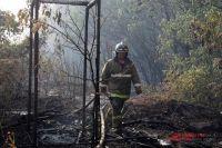 В Оренбуржье сама природа «помогает» в распространении степных пожаров.