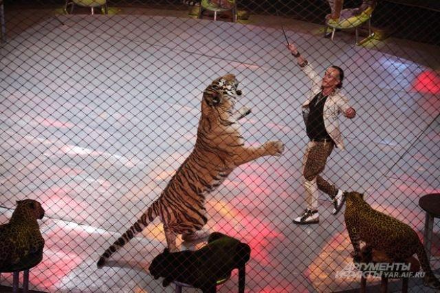 Казанский цирк хотят отреставрировать за530 млн руб.