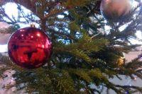 Традиция украшать ёлку укрепилась в XIX веке и дошла до наших дней.