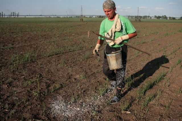 Демонополизировать рынок: Украина вводит пошлины наимпорт русских удобрений