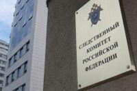 Девушка похитила похитила денежные средства 158 жителей различных регионов России на общую сумму более 250 тысяч рублей.