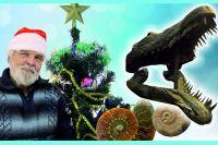 Владимир Ефимов вполне подходит на роль Деда Мороза, только его подарков чиновники от культуры не замечают.