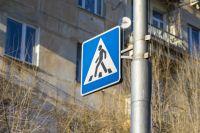 В Оренбурге автомобиль «Renault» на «зебре» сбил мать с ребенком