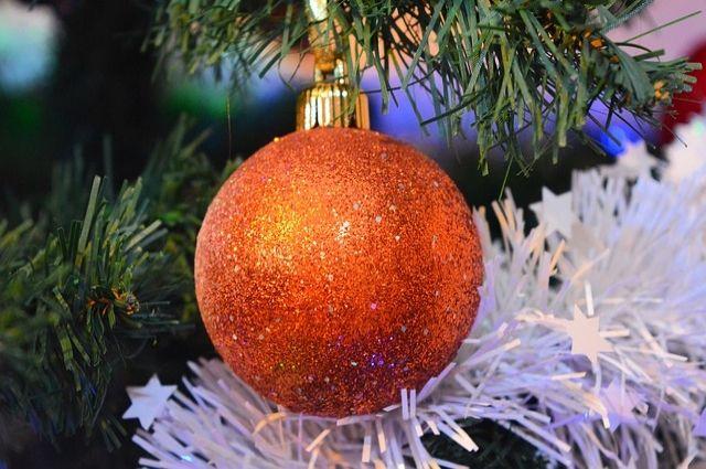 Обитатели нацпарка «Таганай» вопасности из-за новогодней мишуры