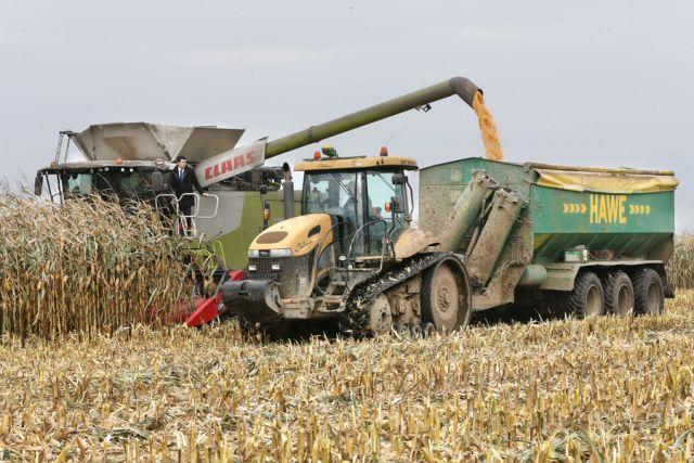 Калининградская область вошла вчисло лидеров РФ поурожайности зерна ирапса