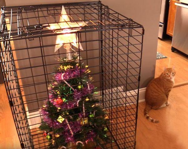 Как защитить ёлку от кота? Использовать клетку. Для ёлки…