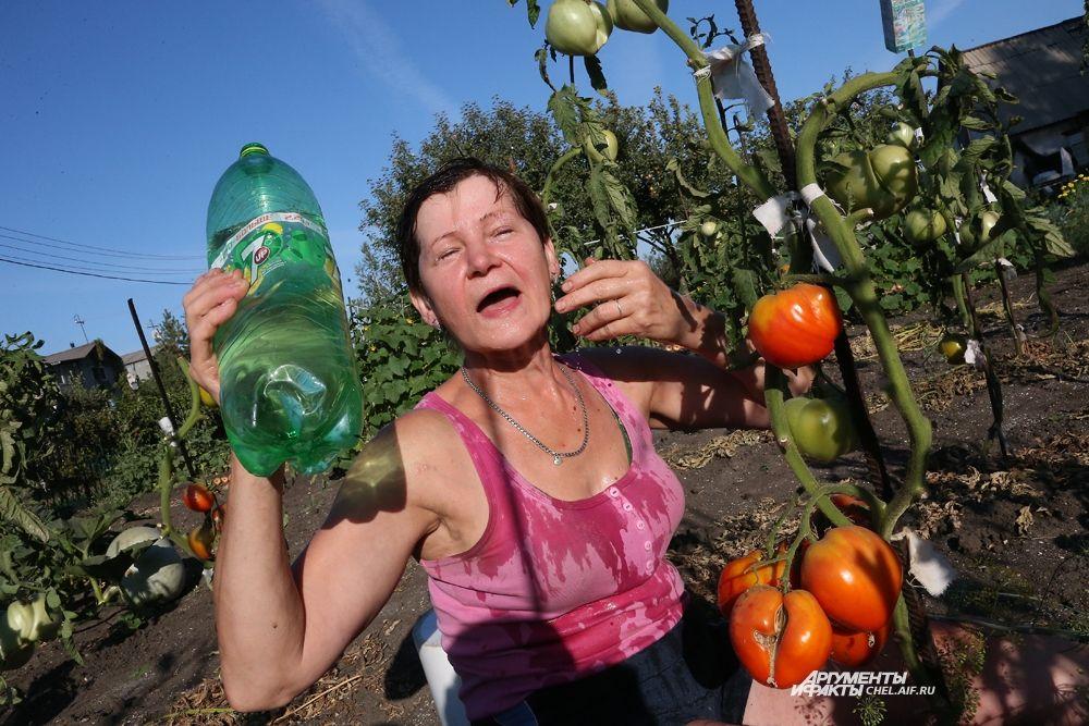Аномально жаркое лето было в Челябинской области. Воздух прогревался до +36 градусов даже в августе.