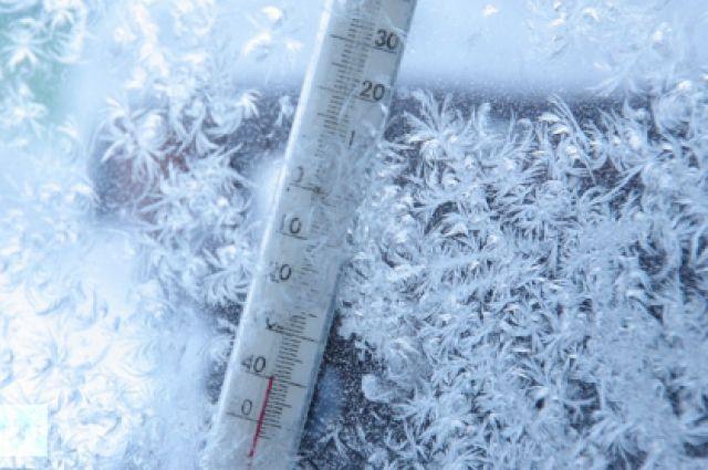 Вначале рабочей недели вПетербурге похолодает доминус четырёх градусов