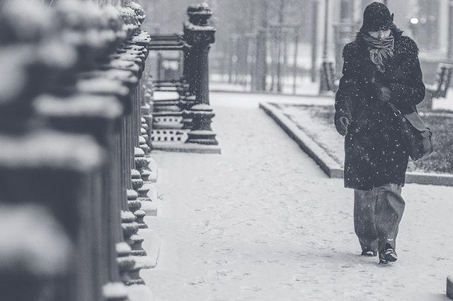 Метеоролог: Погода вПетербурге вернётся кклиматической норме через две недели