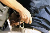 В Оренбургском районе трое грабителей украли мобильный телефон и часть туши