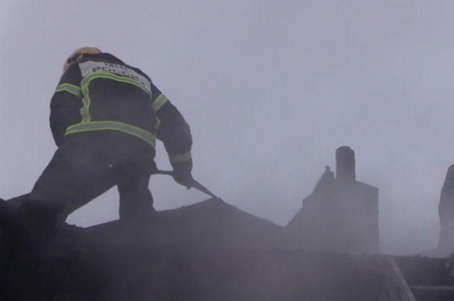 Пожарные спасли изгорящей коммуналки семь человек, 2-х кошек исобаку