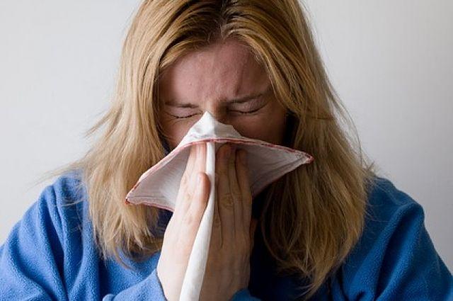 Показатель заболеваемости ОРВИ по области выше недельного эпидемического порога по совокупному населению на 7,7%.