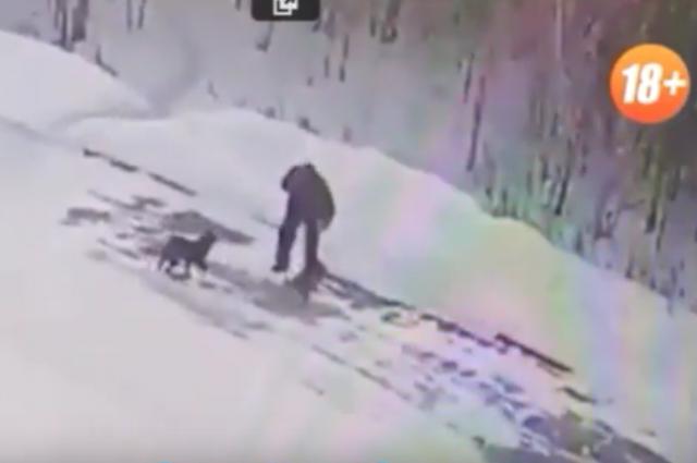 Подозреваемый в живодерстве попал под прицел видеокамеры.