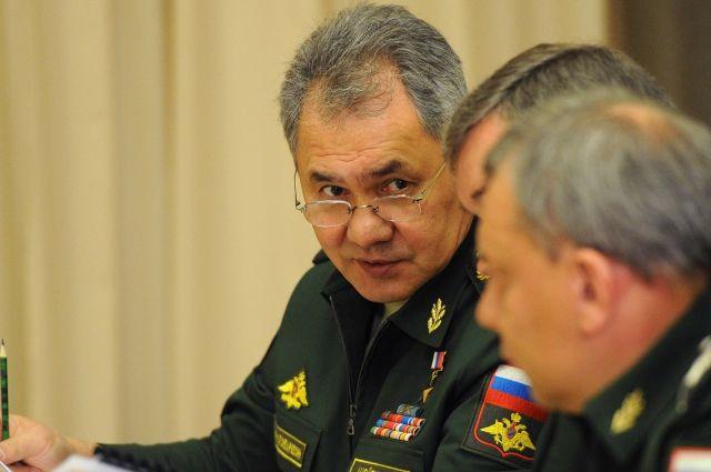 Даже без помощи коалиции мысвои задачи вСирии выполнили— Сергей Шойгу
