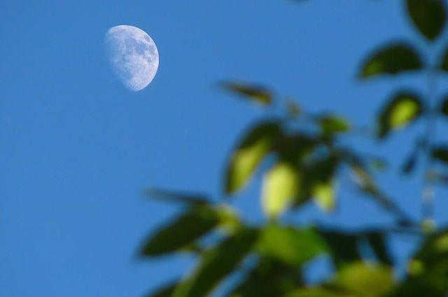 Ученые: Луна создалась в итоге 20 космических катастроф