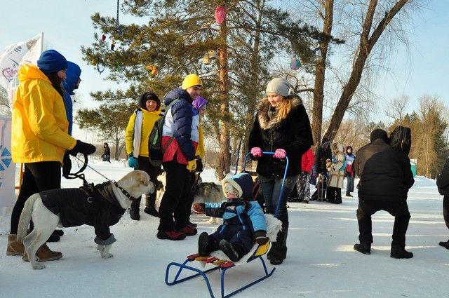 День снега в Омске и прошлом году прошёл очень весело.