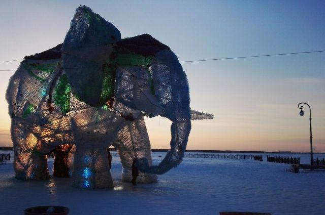 Слону досталось от горожан.