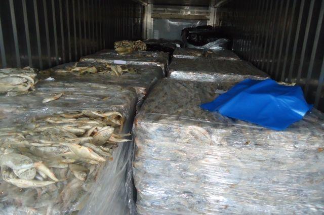 В Оренбуржье уничтожили 13 тонн замороженных окуней.