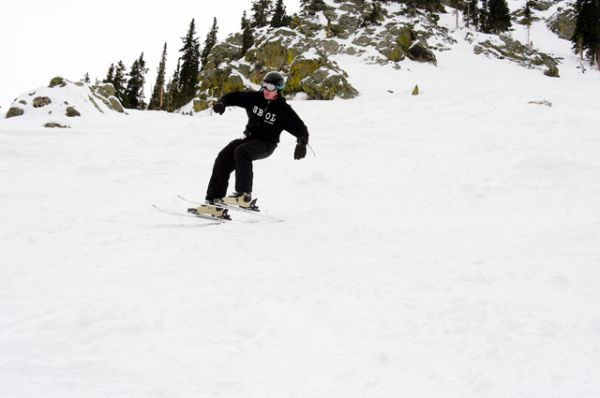 Скиборд. Это зимний вид спорта, сочетающий в себе элементы роликов, коньков, сноуборда и лыж. Скиборды в отличие от стандартных горных лыж используются без лыжных палок, но со стандартными горнолыжными ботинками, которые пристёгиваются к скиборду с помощью креплений. Основным предназначением скибордов является фристайл.