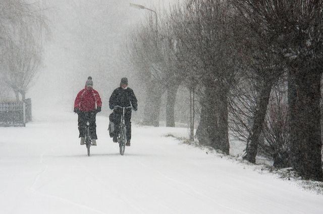 Из-за непогоды вгосударстве Украина обесточены 40 населенных пунктов вчетырех областях— ГСЧС