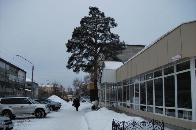 «Дунькина роща» в Барнауле