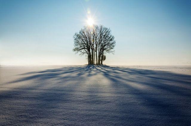 Синоптики ждут холодный февраль.