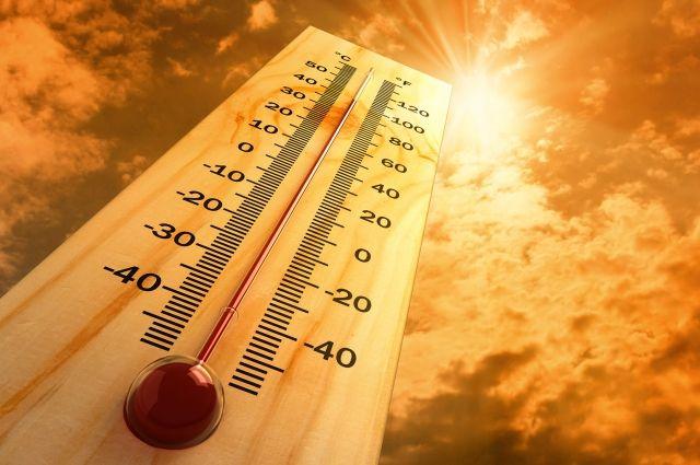 +38,2 °C - абсолютный температурный рекорд в Москве.