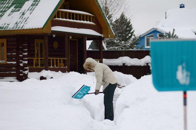 Снежное утепление. Как правильно укрывать растения от мороза?