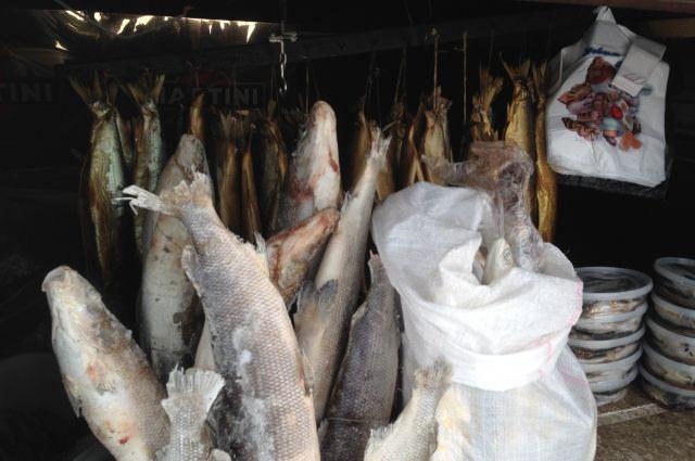 В разных видах рыб содержание полиненасыщенных жирных кислот Омега-3, нужных человеку для баланса в организме, различается в 200 раз.