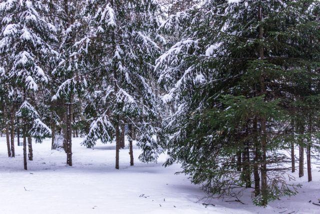 ВРТ 17января похолодает до-18°C, вКазани до-15°C— Гидрометцентр