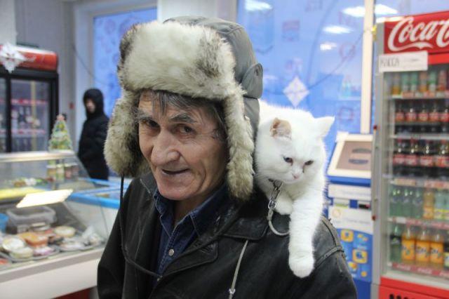 Не все сразу понимают, что этот пожилой человек с великолепной кошкой на плече - незрячий.