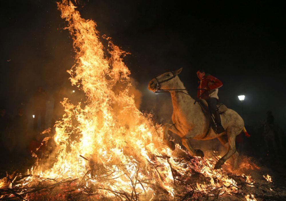 Древней традиции уже около 500 лет. Праздник проводится в деревне Сан-Бартоломе-де-Пинарес в 100 километрах к северо-западу от Мадрида.