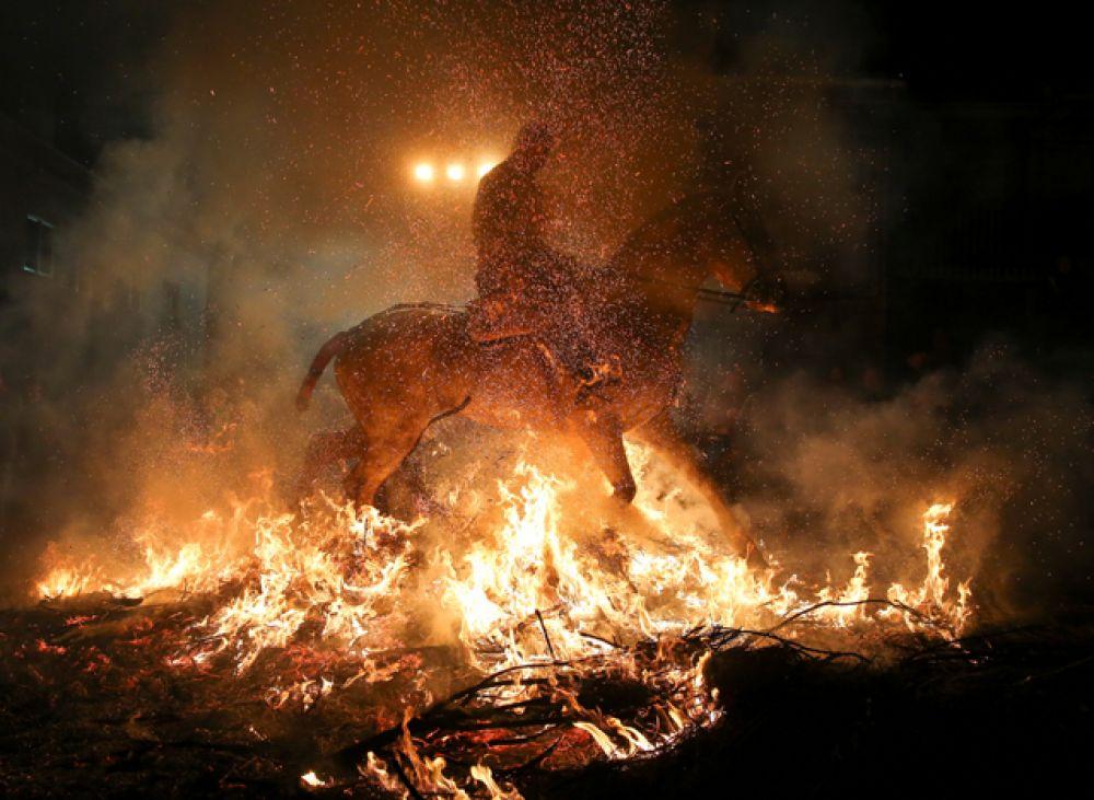 После того, как все лошади очистились огнём, жители используют костры для приготовления барбекю.