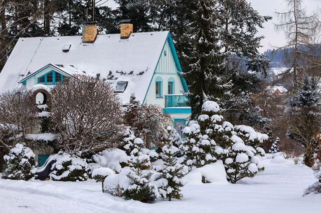 Зимняя пауза. 6 заданий для дачника