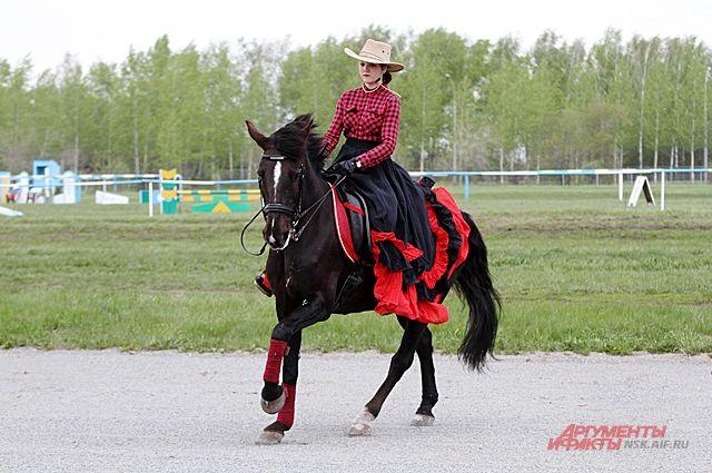 В Новосибирске обрушился конный клуб