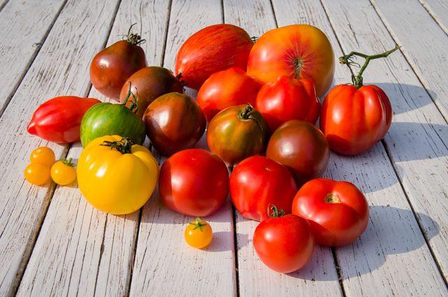 Чем подкормить рассаду помидор: удобрения и сроки 65