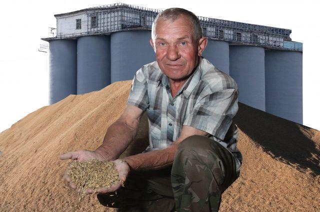 Красноярские сельхозпроизводители накормили хлебом почти полстраны.