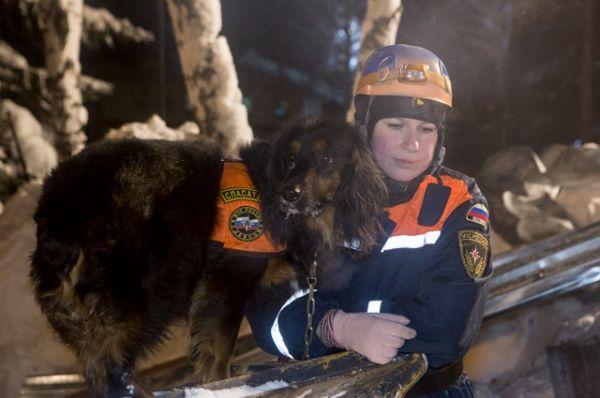 Кинологи с собаками искали выживших после обвала