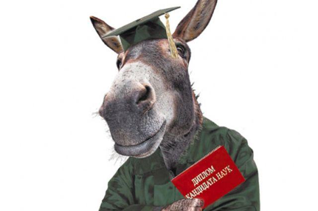 Сколько подлинных вузовских дипломов де факто являются фальшивкой, потому как студент ни дня не учился самостоятельно, - вопрос открытый.