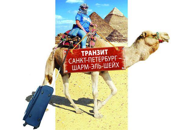 Минтранс предложил запустить регулярные рейсы вЕгипет
